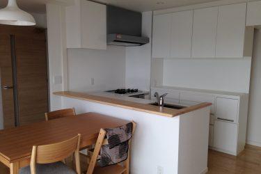 キッチンのトーンと合わせた白いキッチン背面収納